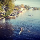 Rowing at Henley